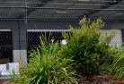 Coolum Chainlink fencing 13